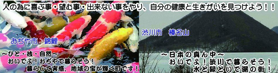 錦鯉&榛名山 ホーム